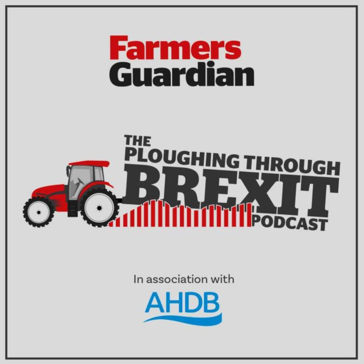cover art for Farming after Brexit: what does the UK-EU trade deal mean for domestic agriculture?