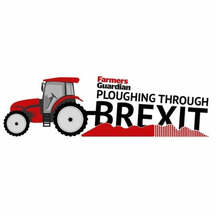 cover art for Trade expert Dmitry Grozoubinski & NFU Brussels director Robin Manning discuss trade deal objectives