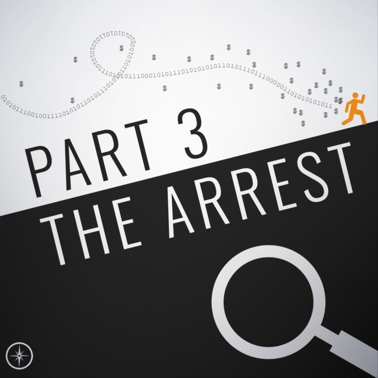 cover art for The Inauguration Hack, Part 3: The Arrest