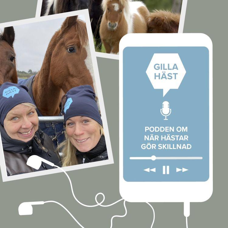 cover art for Möt Nr 1 – under skinnet på Lisen Bratt Fredriksson