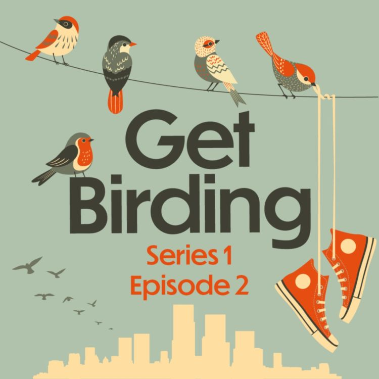 cover art for Series 1: Episode 2 - Susan Calman, Dr Amir Khan, Fyfe Dangerfield