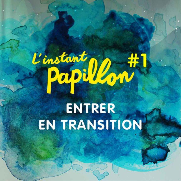 cover art for Entrer en transition