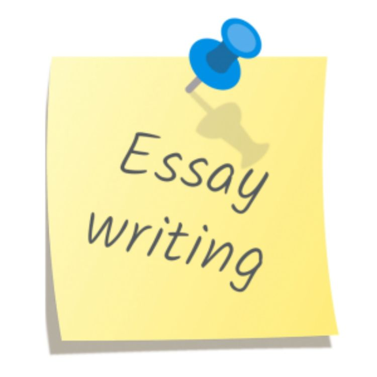 cover art for How To Find Cheap Essay Service