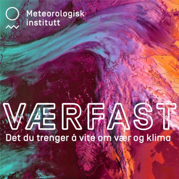 cover art for Styrtregn, klimatilpasning & Sveinung Rotevatn