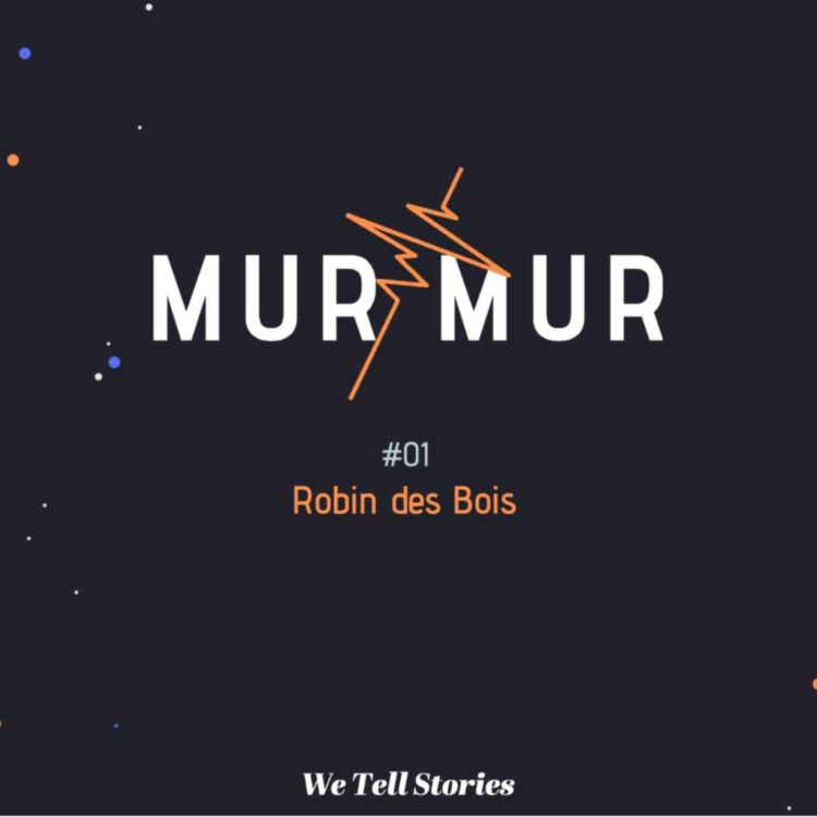 cover art for #01 - Robin des bois