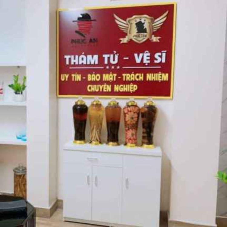 cover art for Dich vu tham tu Ha Noi - Tham Tu Phuc An