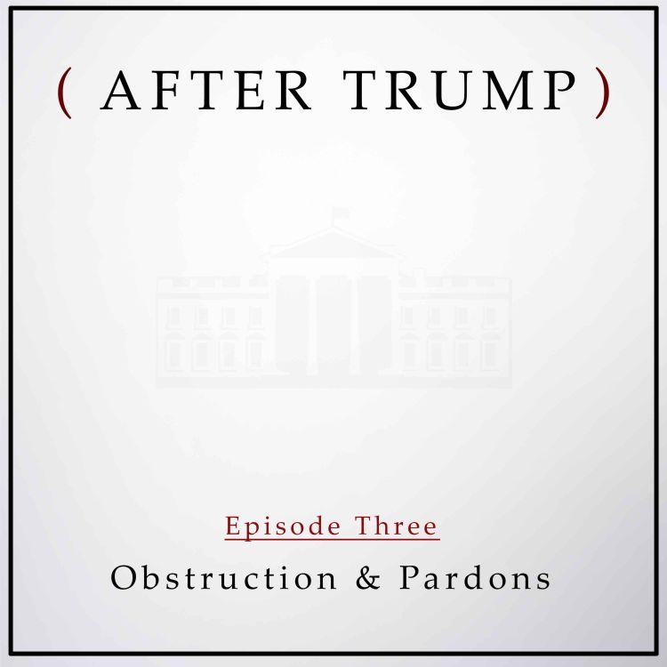cover art for Episode 3: Obstruction & Pardons