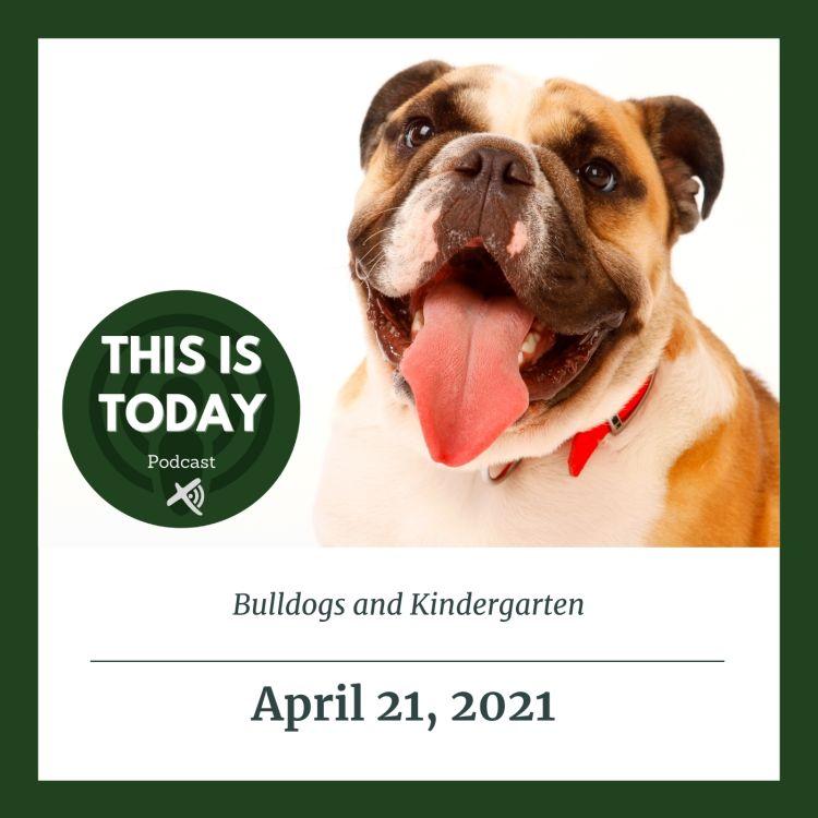 cover art for Bulldogs & Kindergarten