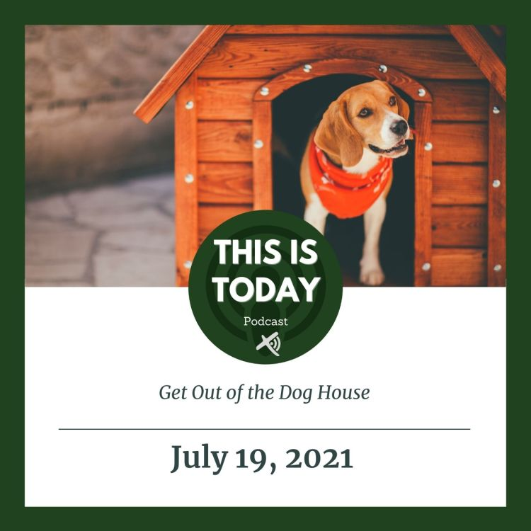 cover art for Get Out of the Dog House