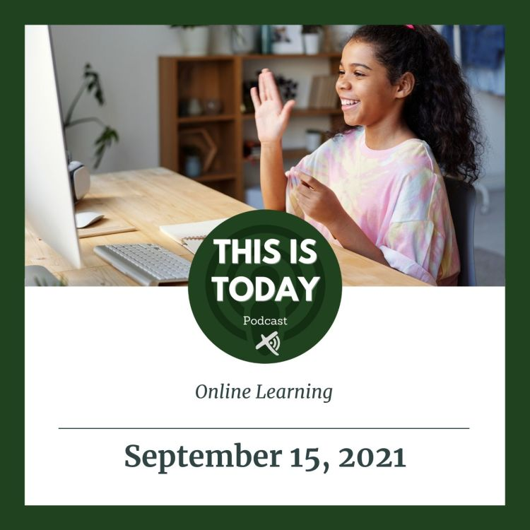cover art for Online Learning
