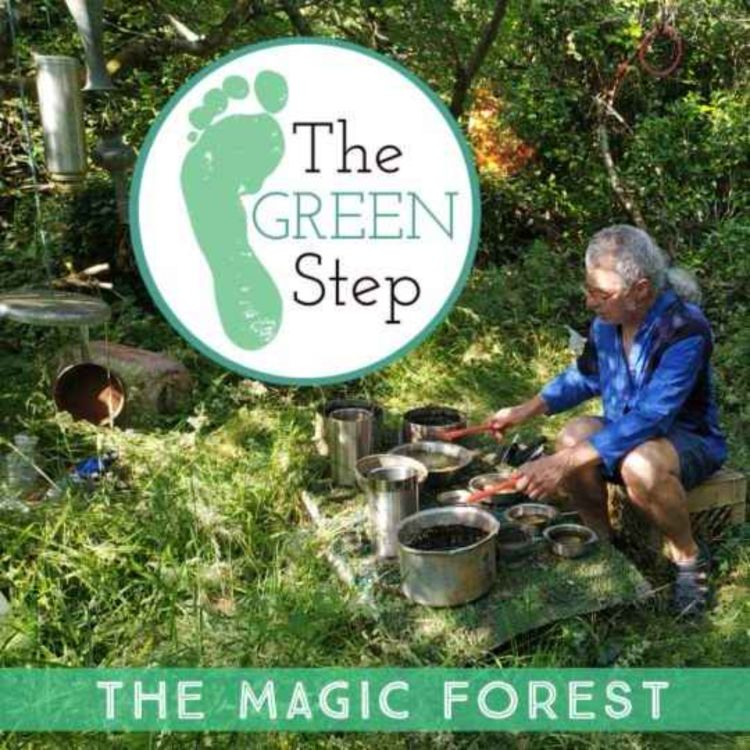 cover art for BONUS: Trip to the Magic Forest with Thomas Wiegandt