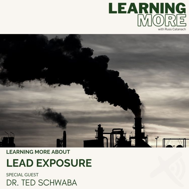 cover art for Lead Exposure