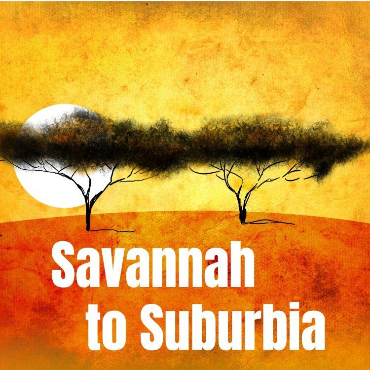 cover art for Savannah to Suburbia