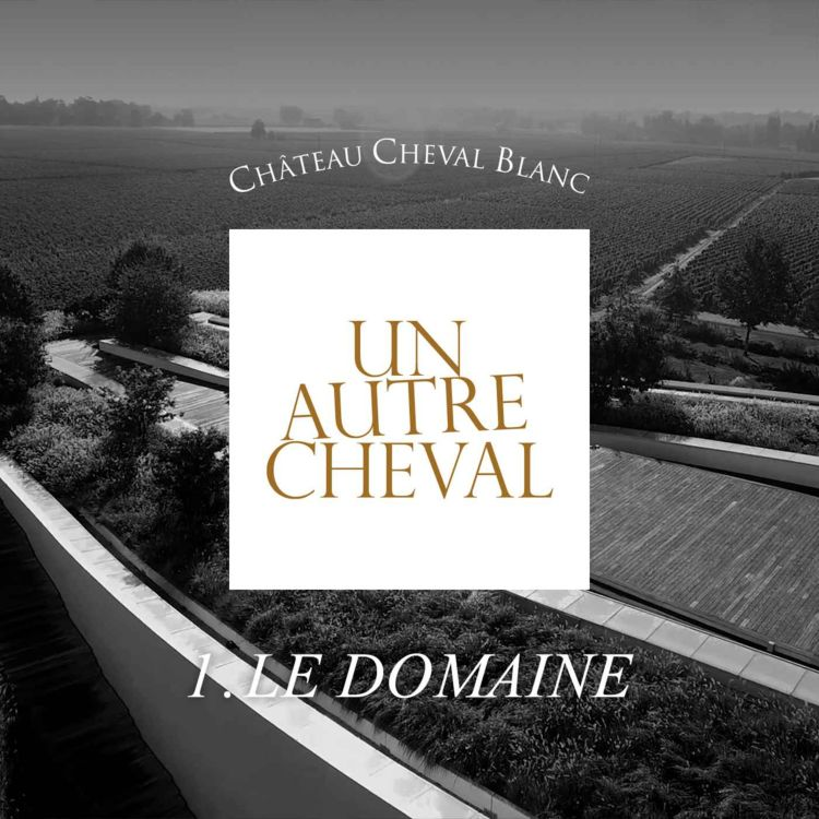 cover art for 1. Le Domaine
