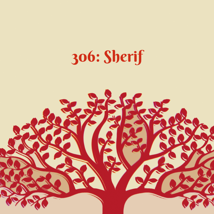 cover art for 306: Sherif