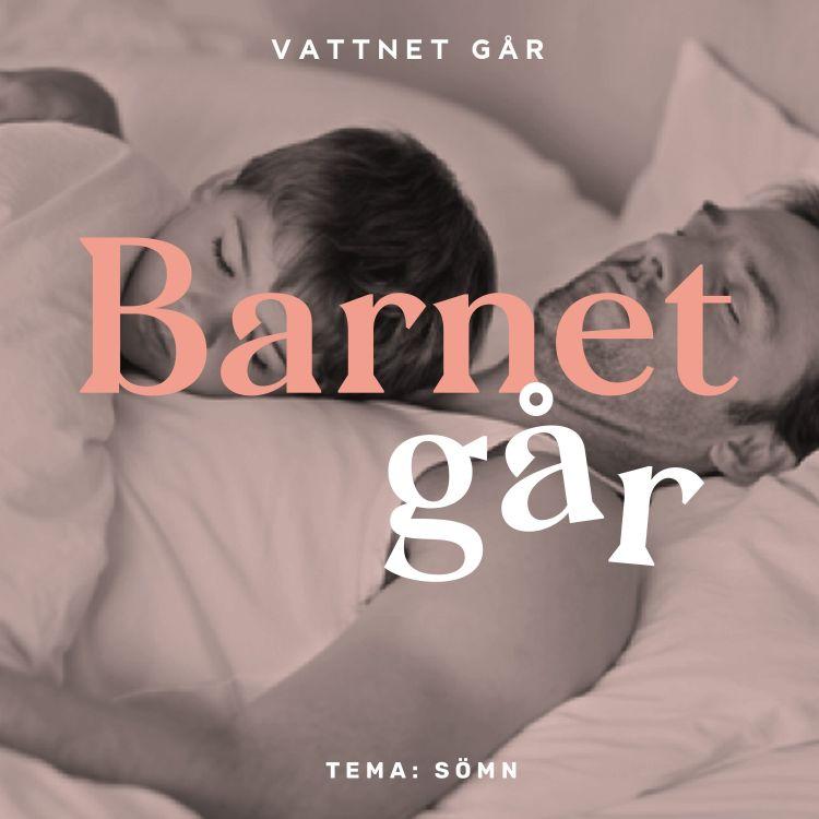 cover art for 317. BG 'Tema Sömn!' med expert Helena Kubicek Boye