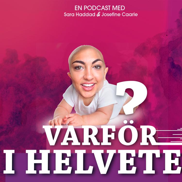 cover art for SARA ÄR GRAVID!