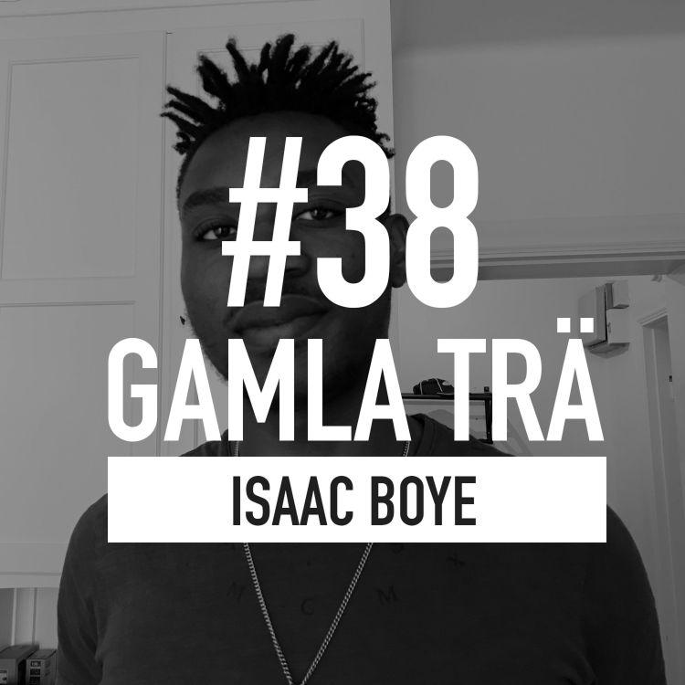 cover art for Avsnitt 38 – Boye