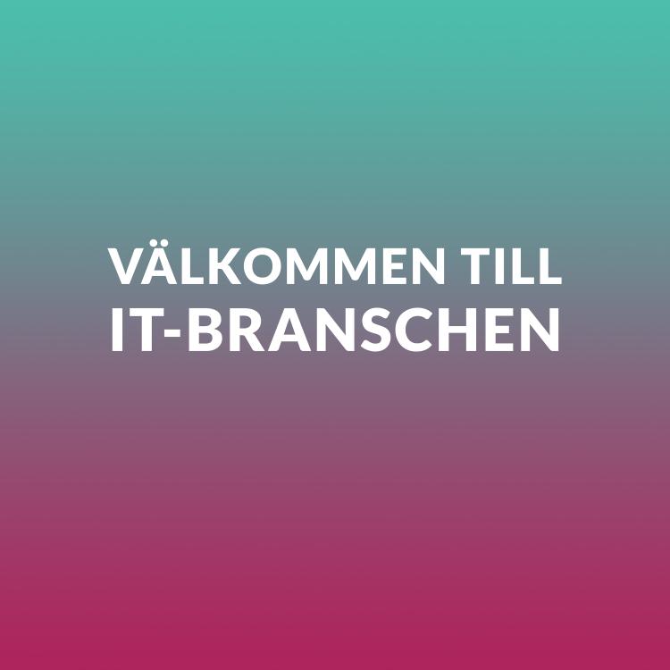 cover art for 3) Välkommen till IT-branschen