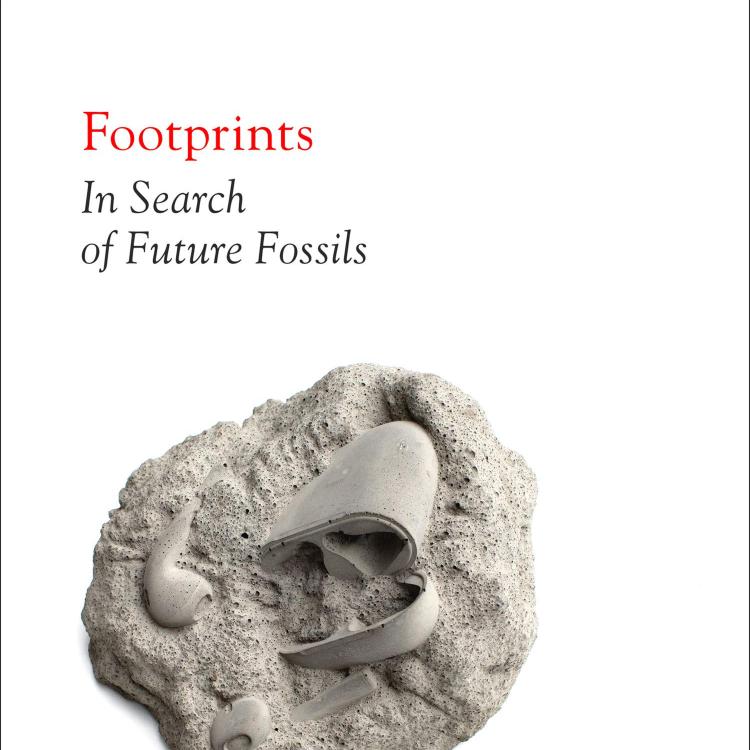 cover art for Little Atoms 639 - David Farrier's Footprints