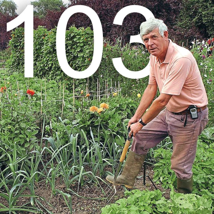 cover art for 103 An Interview with Terry Walton