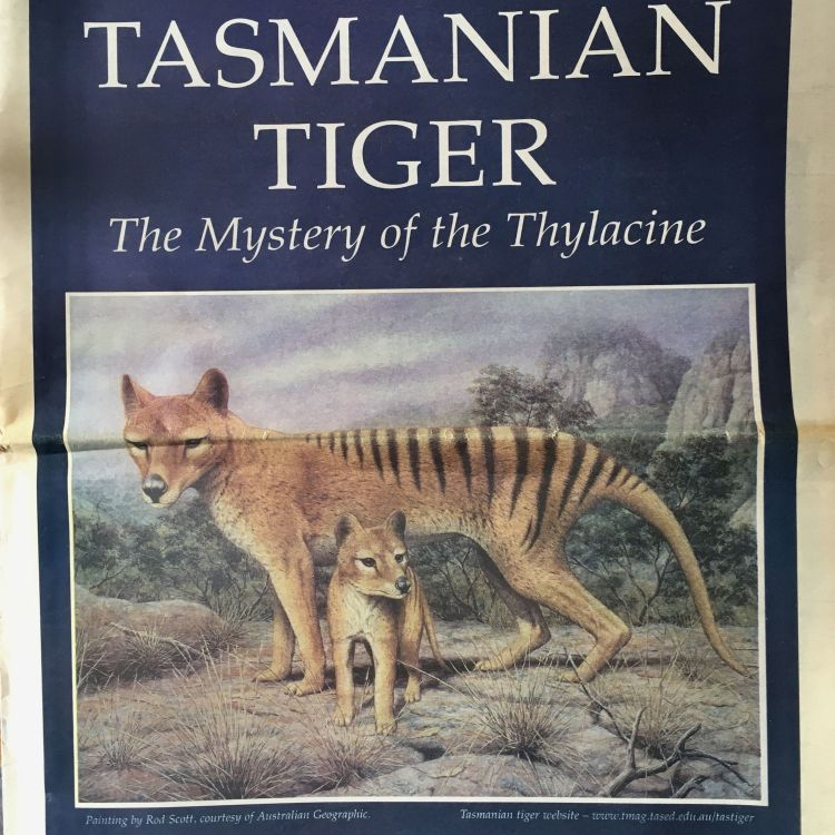 cover art for On the Trail of the Thylacine