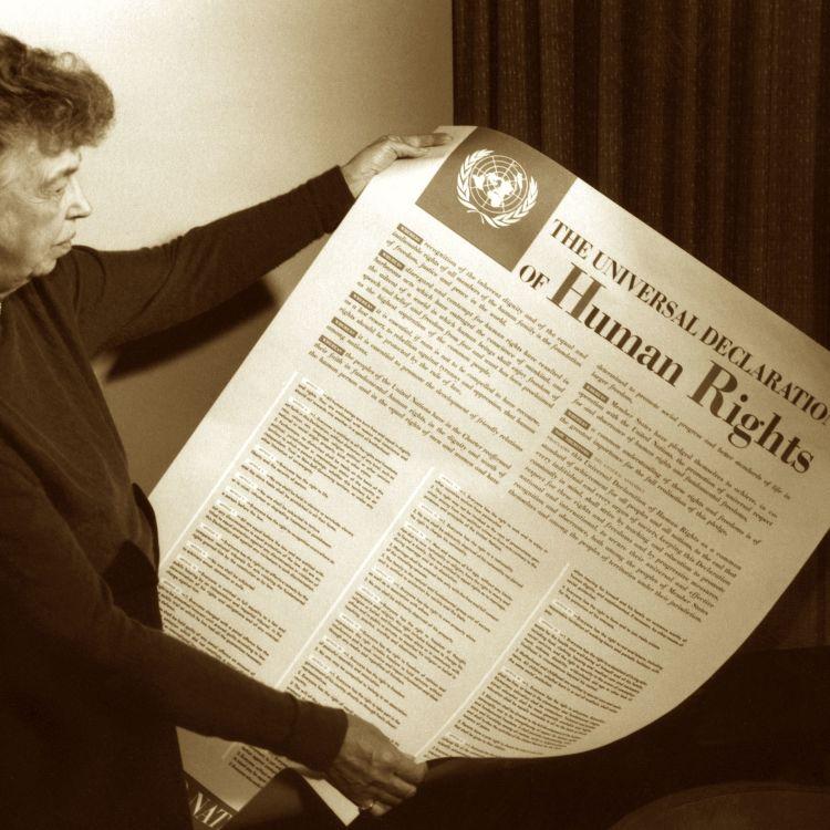 cover art for De universella mänskliga rättigheterna: Att formulera människans godhet