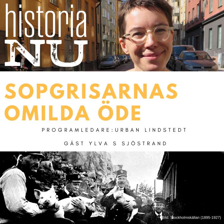 cover art for Stockholms sopgrisars oblida öde i stadens tjänst (nymixad repris)