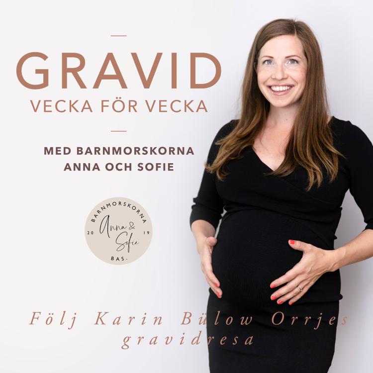 cover art for v.11 Frågor om tidig graviditet och fertilitet