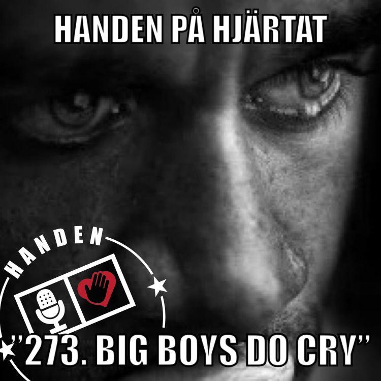 "cover art for ""273. BIG BOYS DO CRY"""