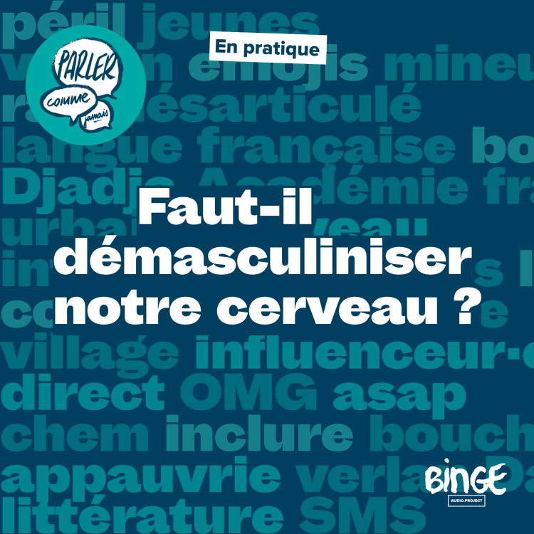 cover art for En pratique   Faut-il démasculiniser notre cerveau ?