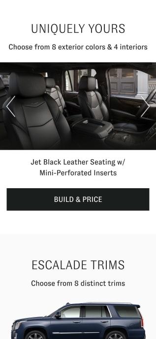 Escalade jet black interior build