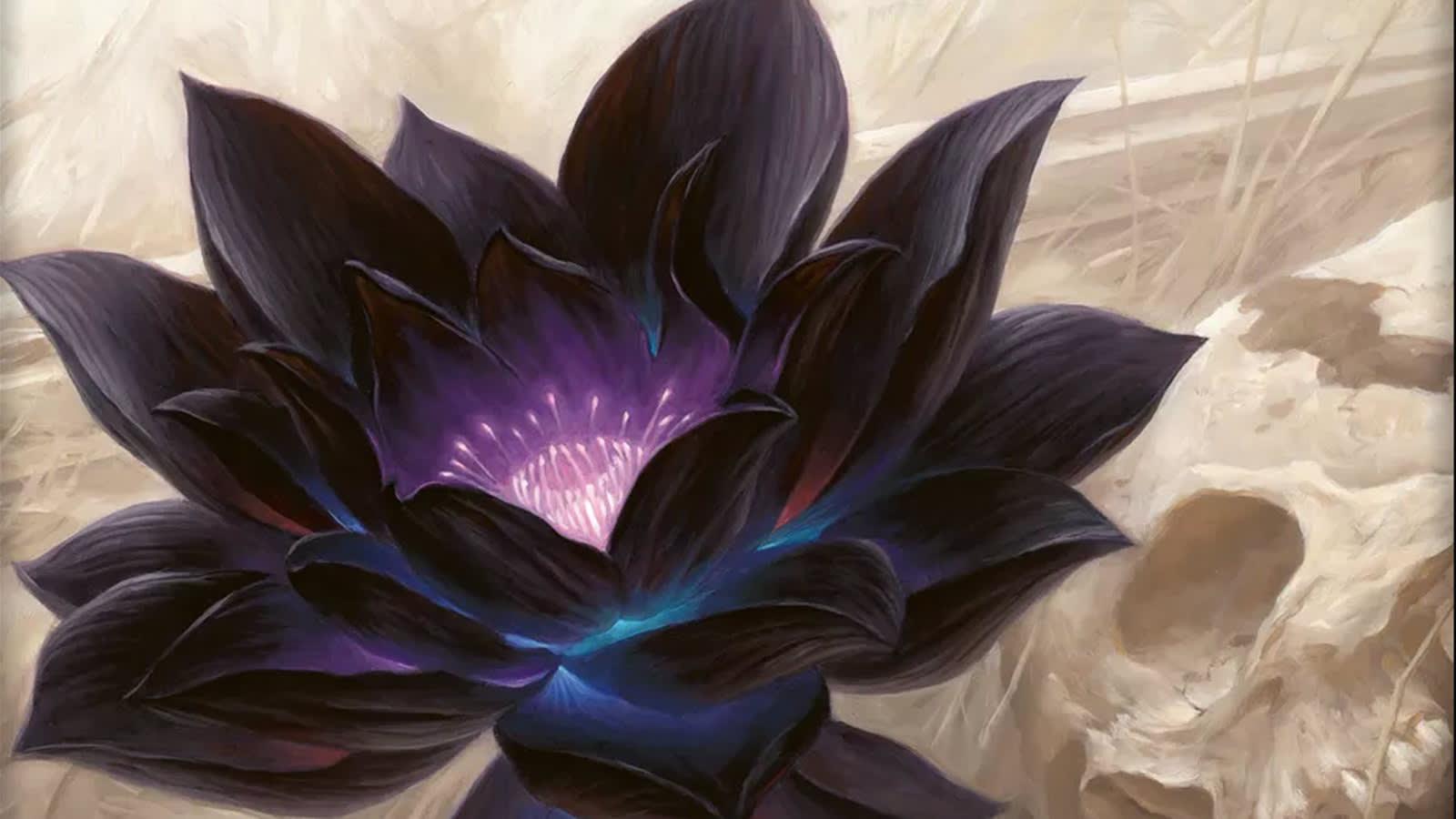 Black Lotus Magic: the Gathering