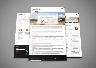 Barré Group Website Redesign