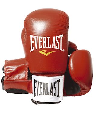 Everlast Boxing Gloves Fighter Red 14oz