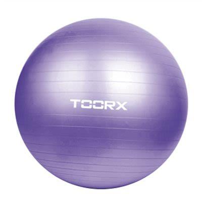 Toorx Purple Gym Ball 75 cm incl. Pump