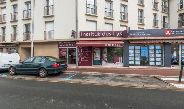 Institut des Lys