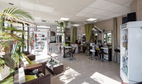 David Camino coiffeur visagiste conseil coloriste et espace esthétique
