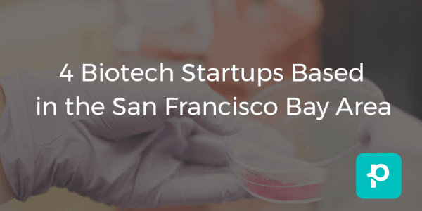 seo image for 4 Biotech Startups Based in the San Francisco Bay Area