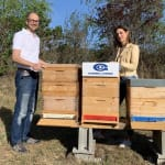 Gabriel-Chemie gives bees…