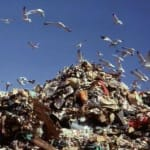 Packaging waste declining…