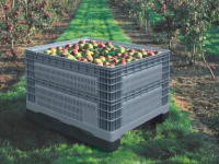 Plastic crates for fruit