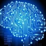 Mózgi na celowniku. W sieci…