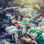 Sri Lanka odeśle gnijące odpady…