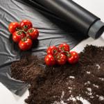 Better soil, higher yield…
