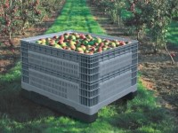 Plastic pallets for fruits
