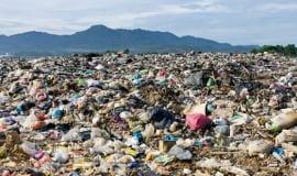 Biznes zgłasza obawy dotyczące dyrektywy Single Use Plastics