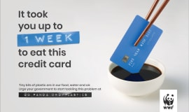 Humans eat a credit card worth of plastic each week
