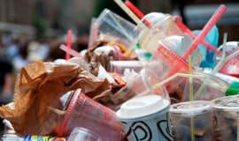 Zakaz sprzedaży plastikowych wyrobów w Wałbrzychu niezgodny z Konstytucją RP