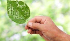 DSM, Sabic and UPM Biofuels to create bio-based Dyneema